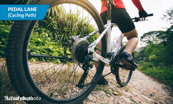 PEDAL LANE - Cycling Path